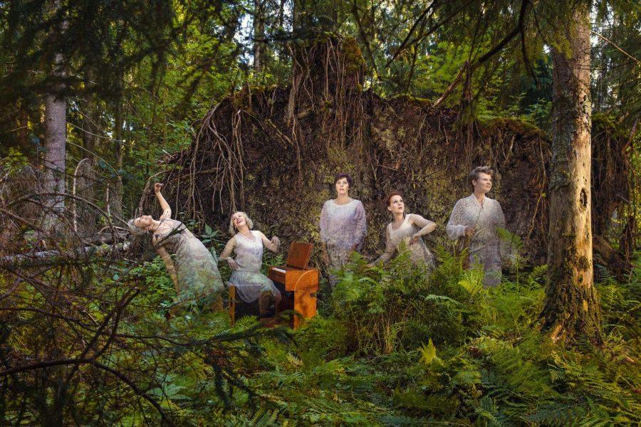 Juurakko-yhtye